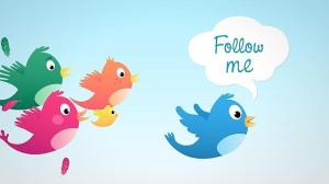 how-to-grow-twitter-followers